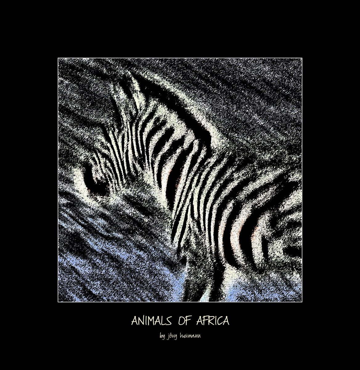 Animals-of-Africa 06