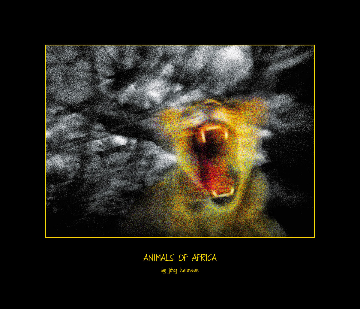 Animals-of-Africa 01