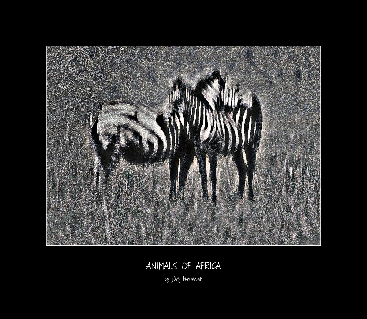 Animals-of-Africa 05
